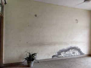 Wall Paint damaged upto the level of plaster